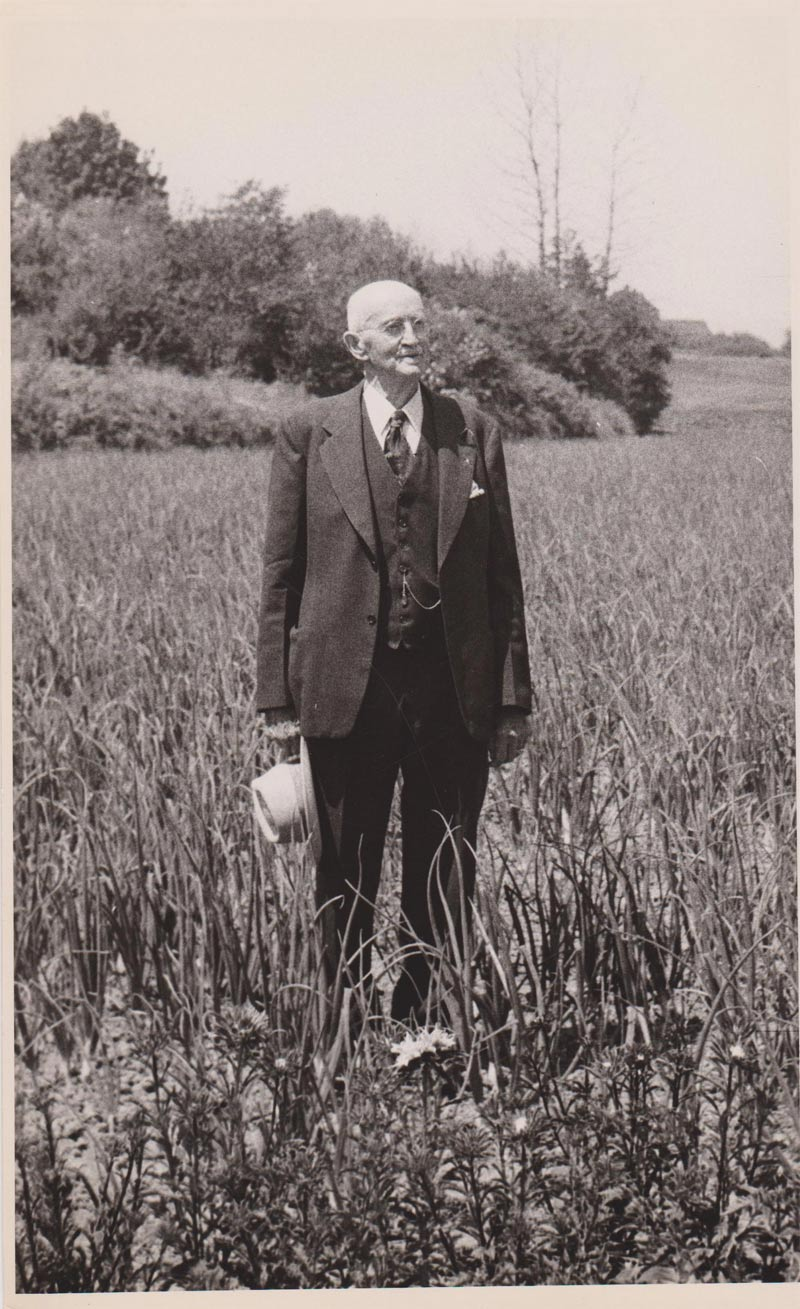 Alva Cook stood in one of the onion fields that he remembered weeding with Hoover when they were boys. Hoover-Minthorn House Museum collection.